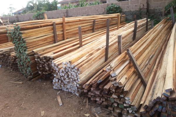Holz, Arbeitsplätze, Jobs